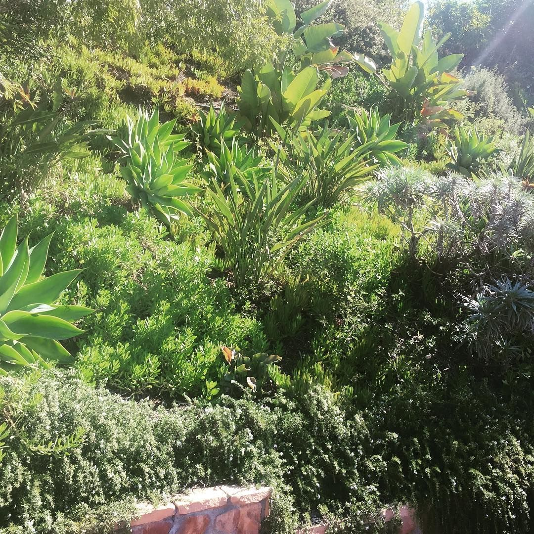 Landscaping jobs near me landscaping jobs local jobs