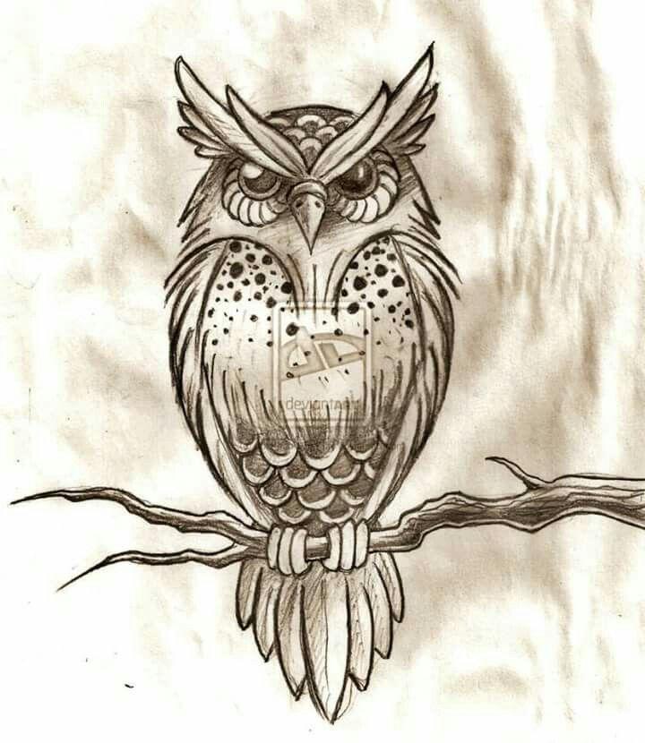 Картинки совы прикольные для тату