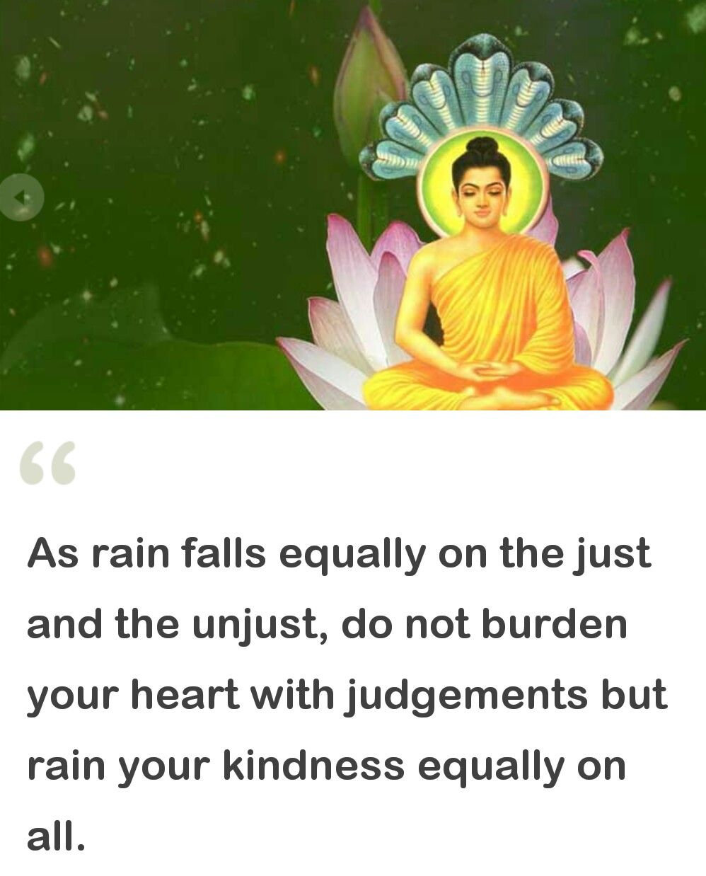 Buddha Quotes About Love Daily Buddha  Peace To You  Pinterest  Buddha Buddhism And
