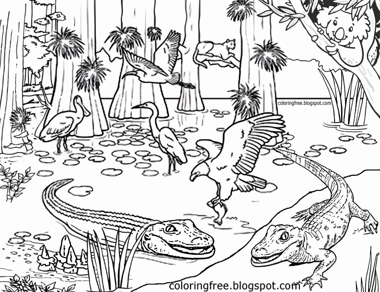 - Complex Animal Coloring Pages In 2020 Animal Coloring Pages, Zoo