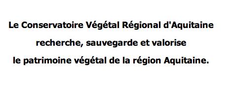 Conservatoire d'Aquitaine - Vente d'arbres fruitiers