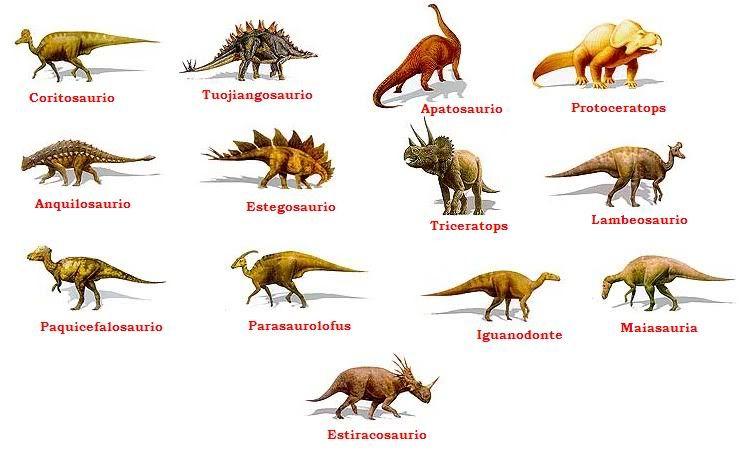 Dinosaurios Ornitrisquios Jpg 744 466 Tipos De Dinosaurios Nombres De Dinosaurios Dinosaurios Imagenes Es como viajar en el tiempo con fotos muy realistas. tipos de dinosaurios nombres de