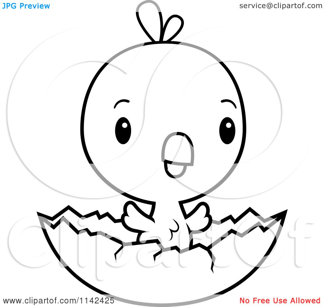 Cool Cartoon Clipart Of A Black And White Cute Baby Chick