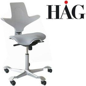 Hag Capisco Puls 8020 Chair Light Grey Chair Light Grey Light