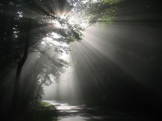 I credenti sono sale della terra e luce del mondo |——> Fratelli nel Signore, badate dunque che non diventiate insipidi e non mettiate la vostra lampada sotto il moggio, perché sta sc…