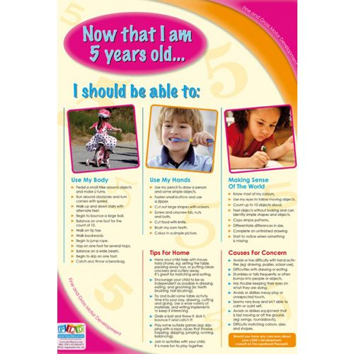 5 Year Old Fine And Gross Motor Developmental Milestones Developmental Milestones 5 Year Old Development 5 Year Olds