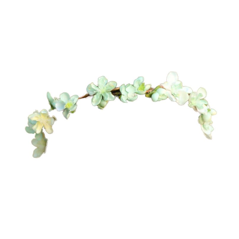 Totally Transparent Flower Crown Crown Png Transparent Flowers