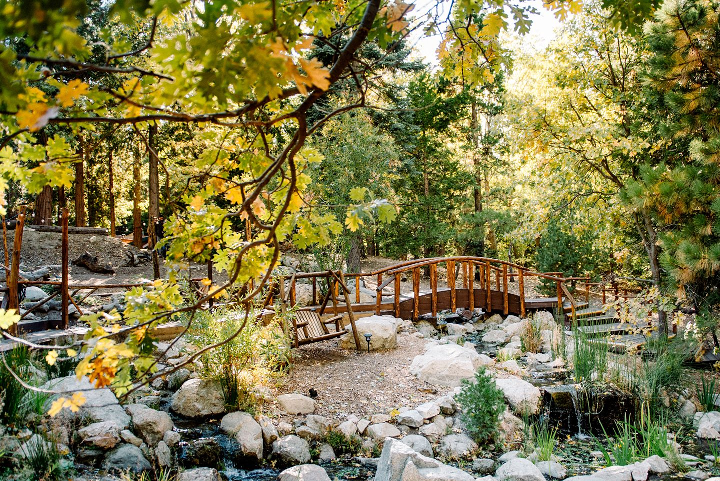 Southern California Outdoor Forest Wedding Venue Pine Rose Cabins
