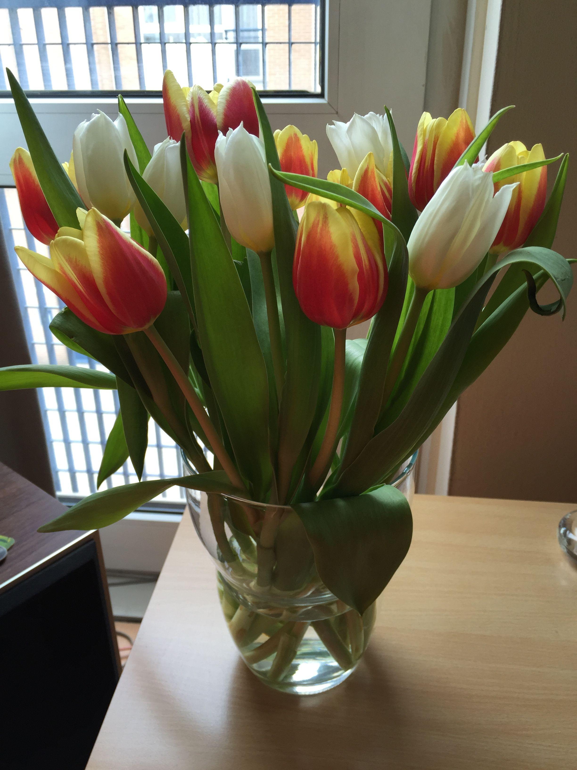 Tulips, Vase, Tulips Flowers, Flower Vases, Tulip, Jar