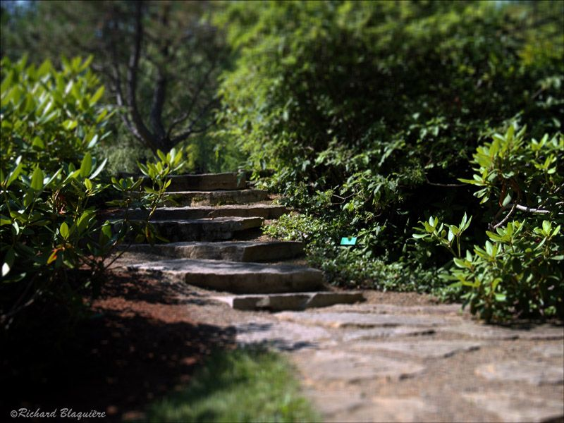 Take One Step At A Time | Vision Nord Ouest