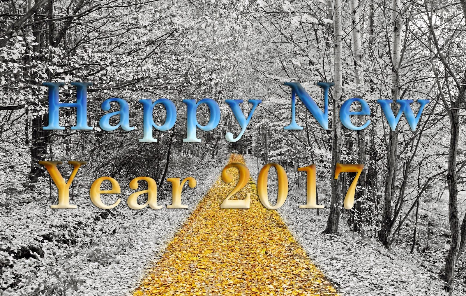 Wallpaper download new 2017 - Wallpaper Download 2017 Happynewyear2017 Celebrate New Year 2017 With Happy New Year Wallpapers Http