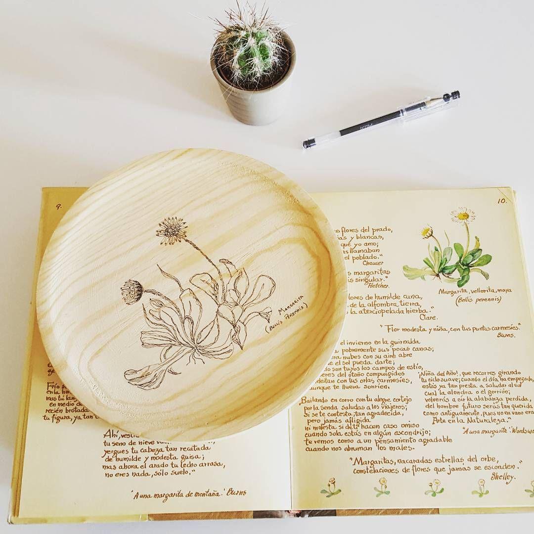 #margarita #daisy #wood #pendrawing #sketch #naturaleza #vintage #botanical #plant #deco #nordic #drawing #dibujo #art #arte #artwork #beautiful