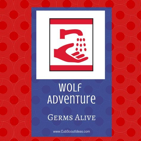 Find requirements and ideas for the Wolf Cub Scout elective adventure, Germs Alive.