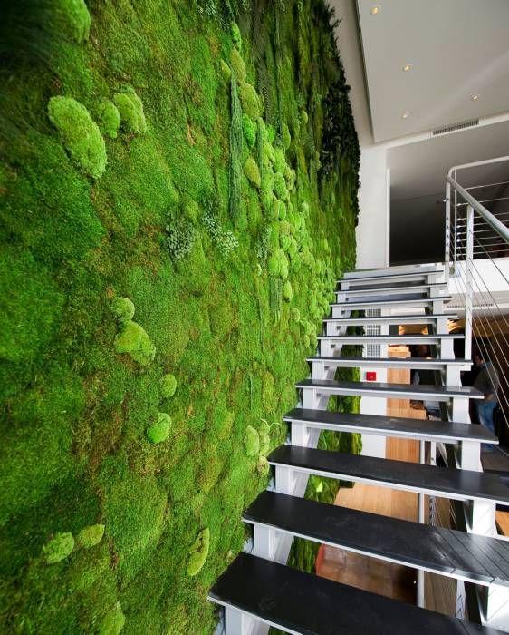 vorstellung unserer produkte pflanzen und moosbilder von stylegreen flur diele von. Black Bedroom Furniture Sets. Home Design Ideas