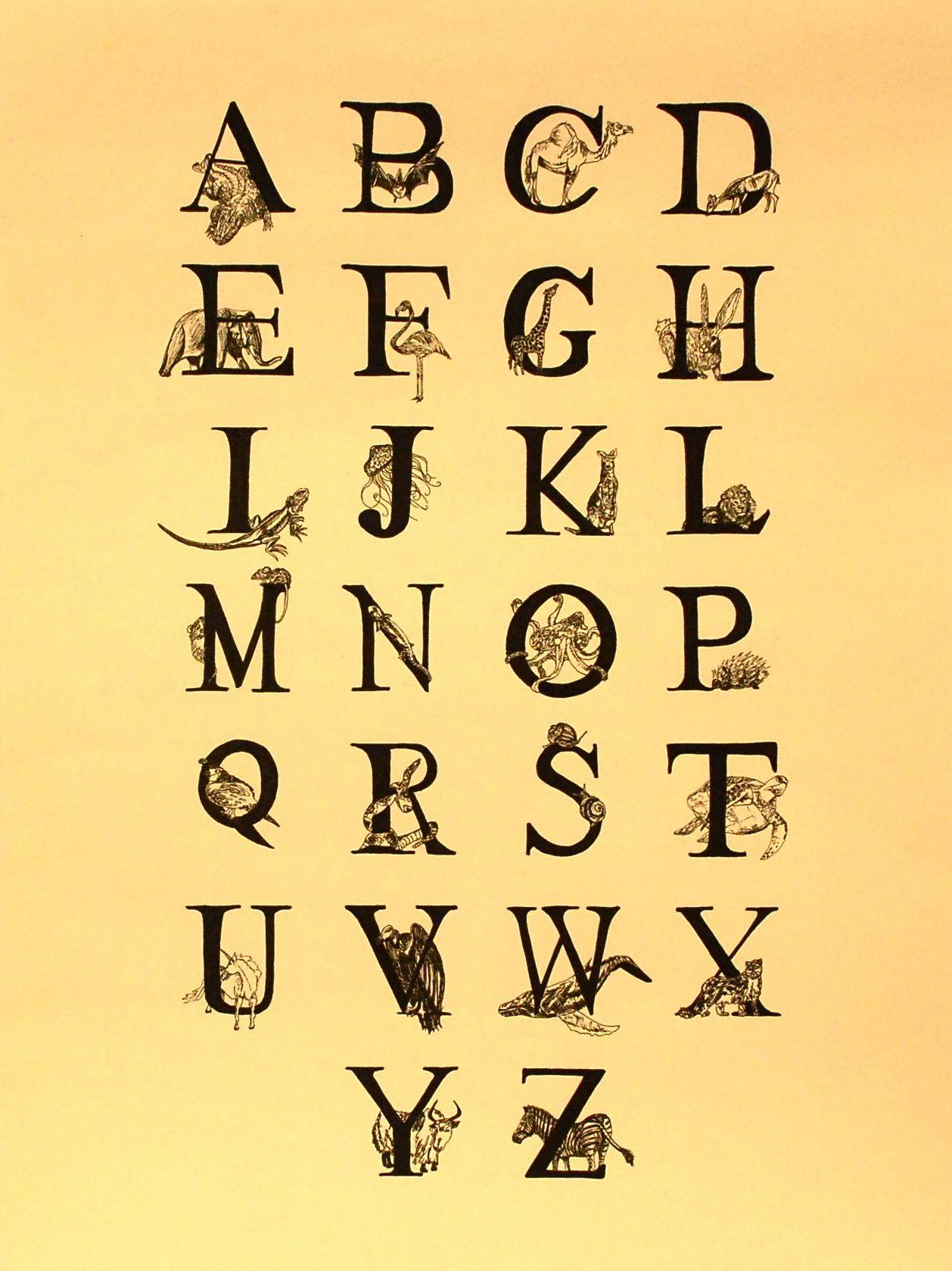 Alphabet Animals Illustration by Rosemary Santarelli