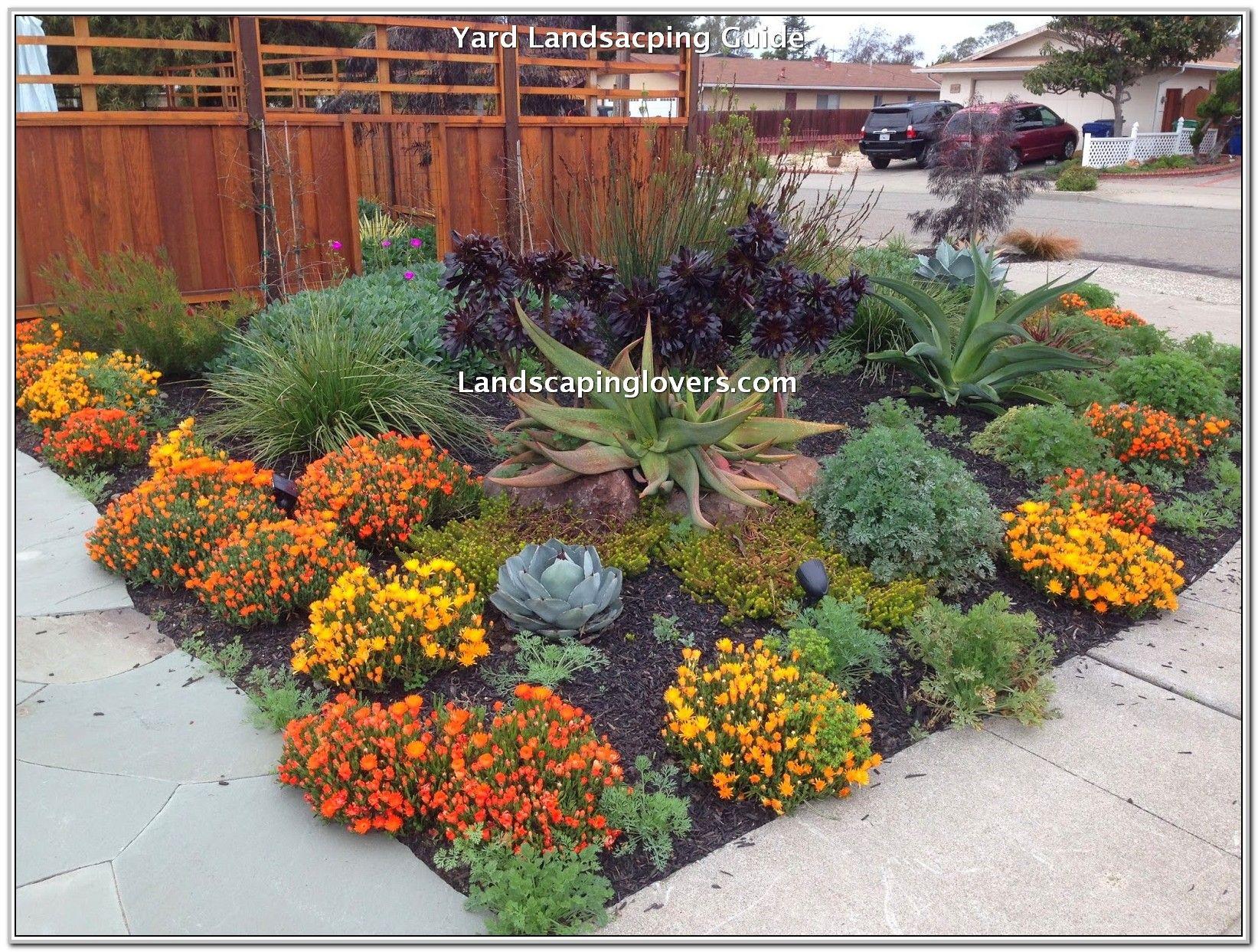 Tips On Having A Low Maintenance Landscape Drought Tolerant