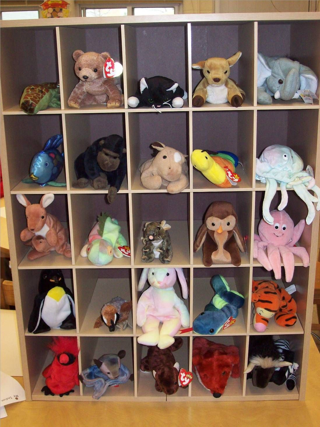Carefully Selected Ty Stuffed Animals To Represent Zoo Phonics