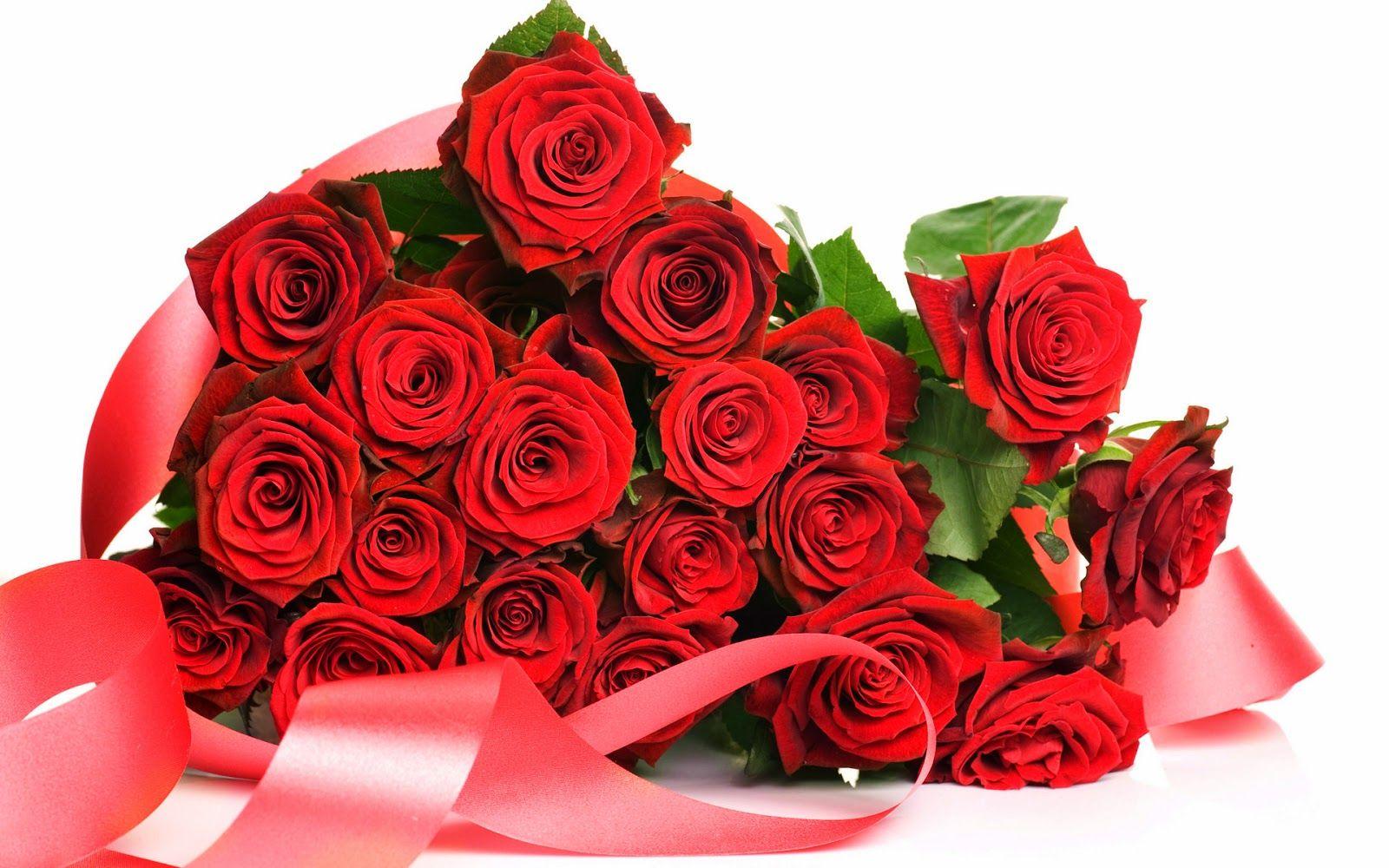 Pin On Seductive Flowers Blooms Happy rose day ke wallpaper download