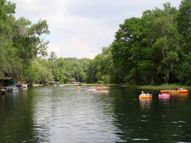 Tube Kayak Or Canoe Down The Rainbow River In Florida Clear