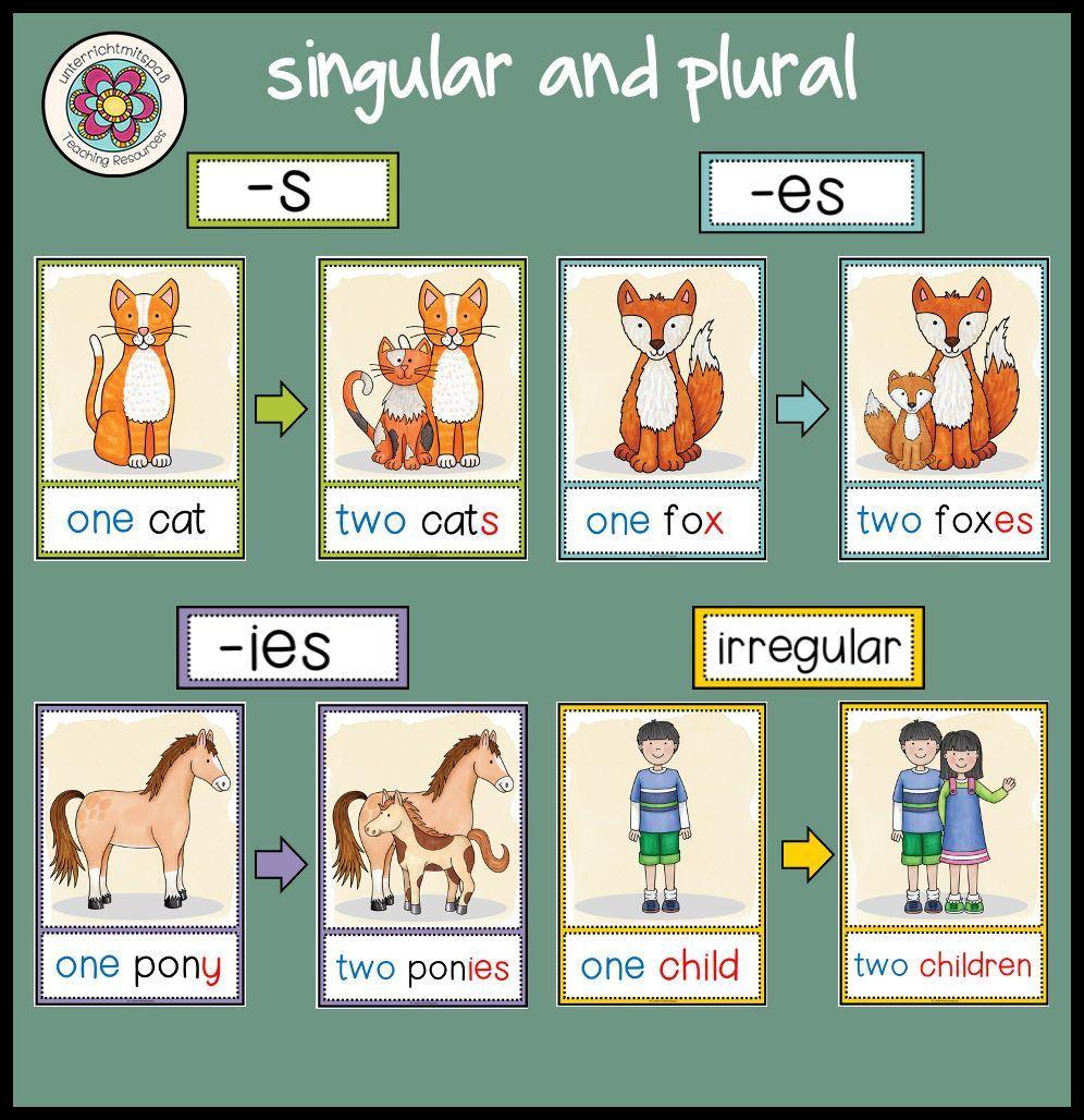 Singular And Plural Tafelmaterial Unterrichtsmaterial Im Fach Englisch In 2021 Englisch Lernen Kinder Unterrichtsmaterial Englisch Grundschule