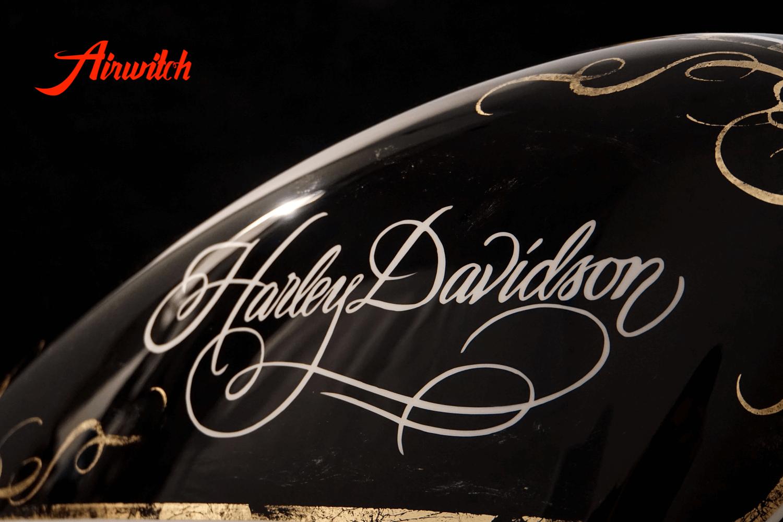 Custom Paint Tank Lady Harley Davidson Sportster 48
