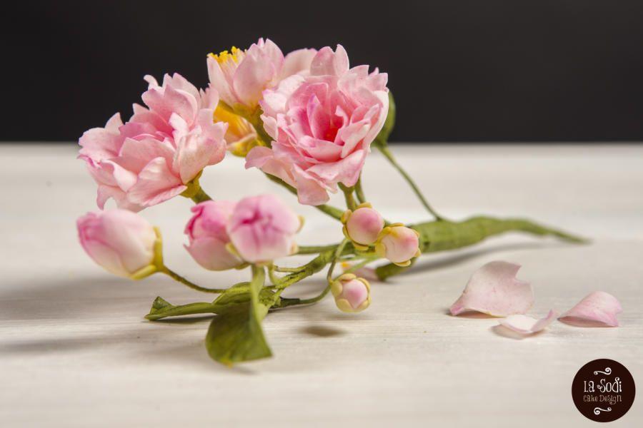 Cherry blossoms.. - Cake by La Sodi Cake Design