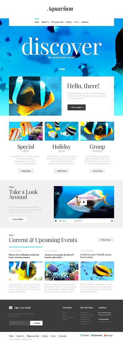 99+ Ide Aquarium Design Website Gratis Terbaik Download Gratis