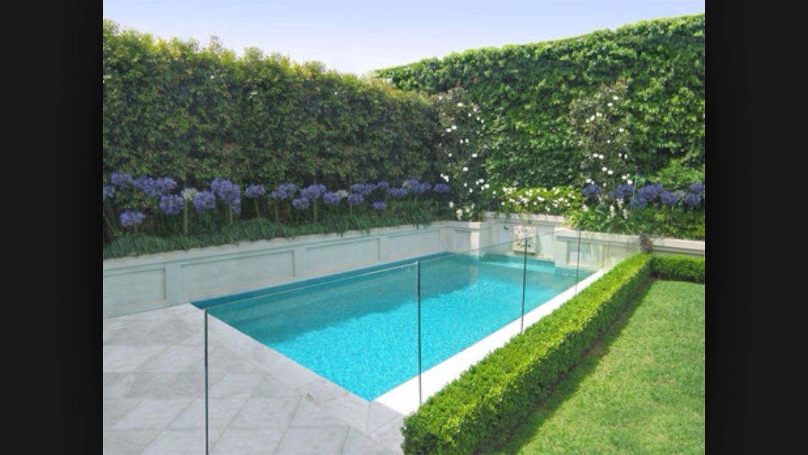 Hedge along pool fence garden pinterest gardens for Garden near pool