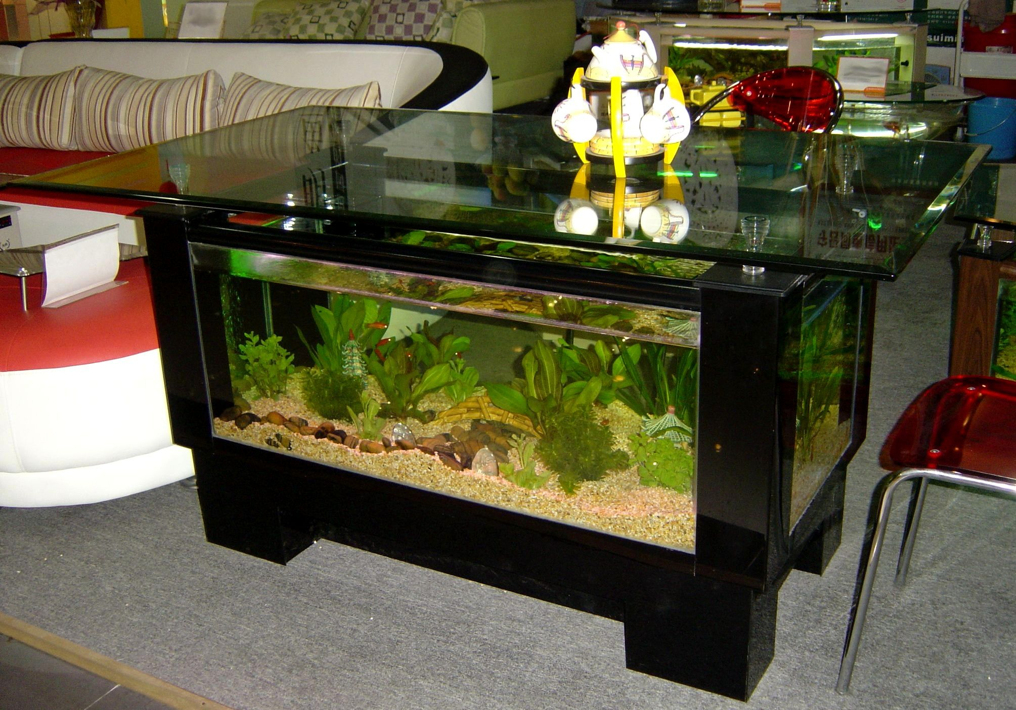 Fish aquarium in downtown toronto - We Manufacture Aquarium Coffee Tables That Is Fish Ready The Whole Combo Includes Filtration Lighting Pumps And Heater It S Even Equipped With Rollers