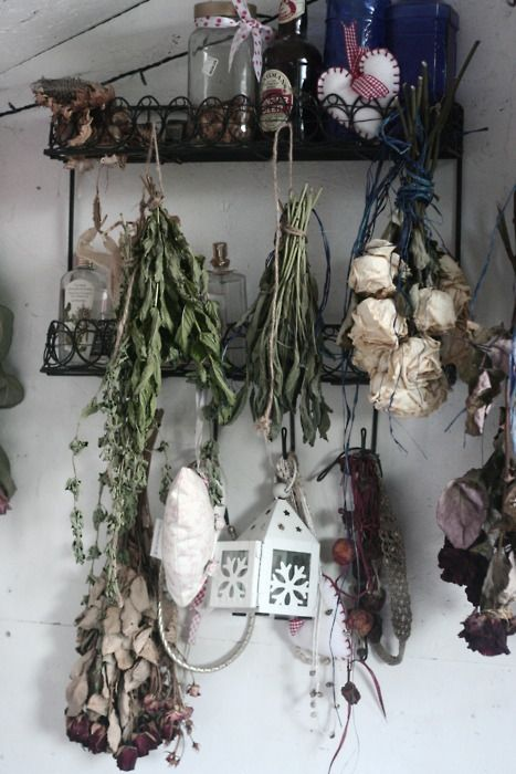 Hanging Dried Flowers Upside Down Perfect Way To Occupy Empty