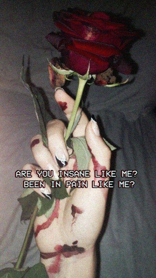 rose quotes tumblr alternative