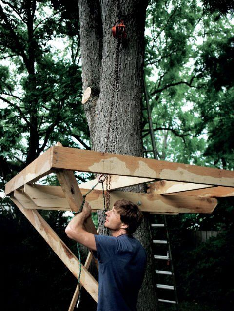 25 Amazing And Affordable Treehouses Youu0027ll Want To Rent For Your Next  Vacay Tree House Plans   How To Build A Backyard Tree House   Popular  Mechanics