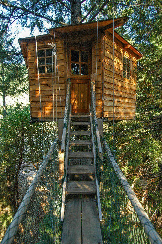 25 awesome kids tree houses | tree houses, house and treehouses
