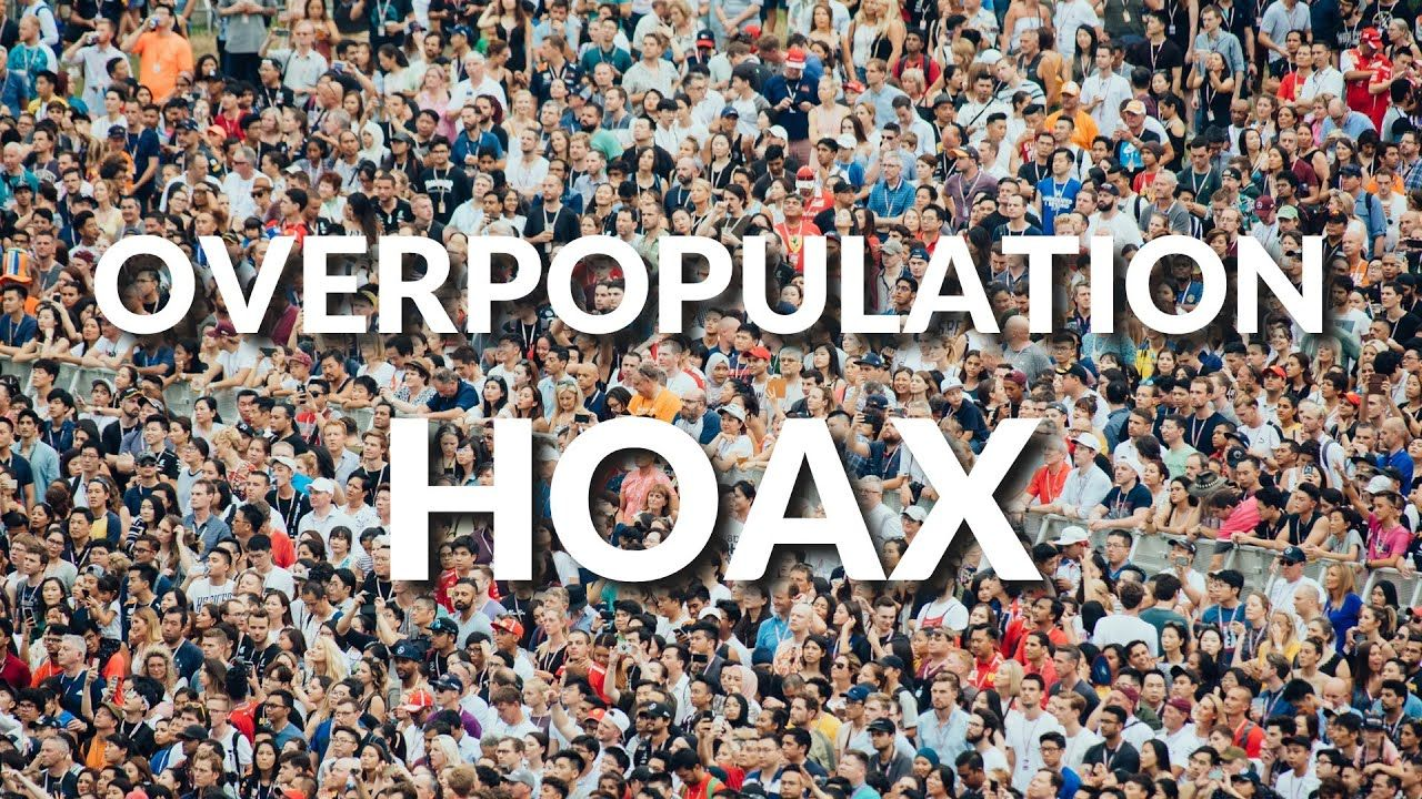 To Have And To Hoax Summary