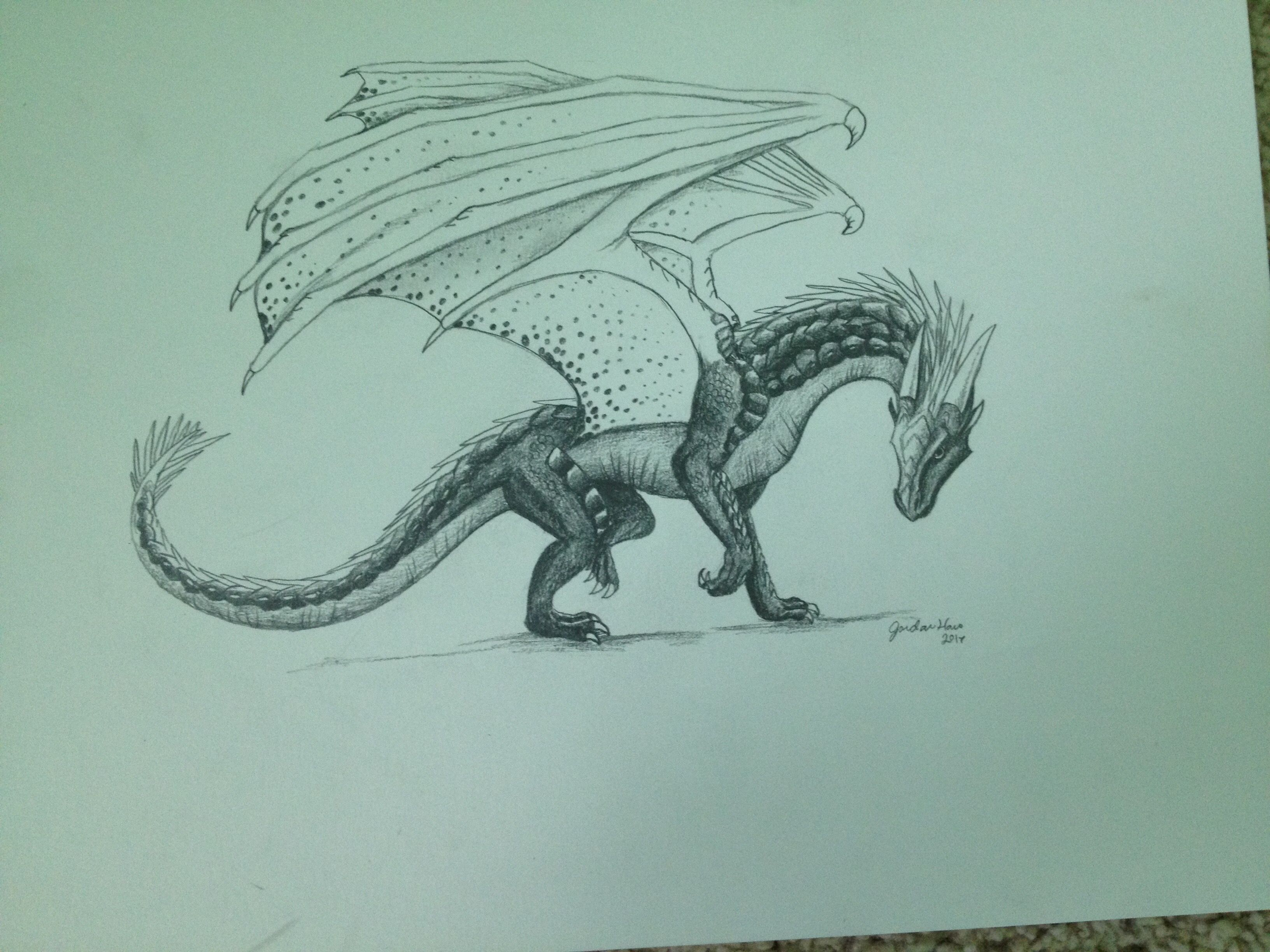 Whiteout Wings Of Fire Dragons Wings Of Fire Fire Dragon
