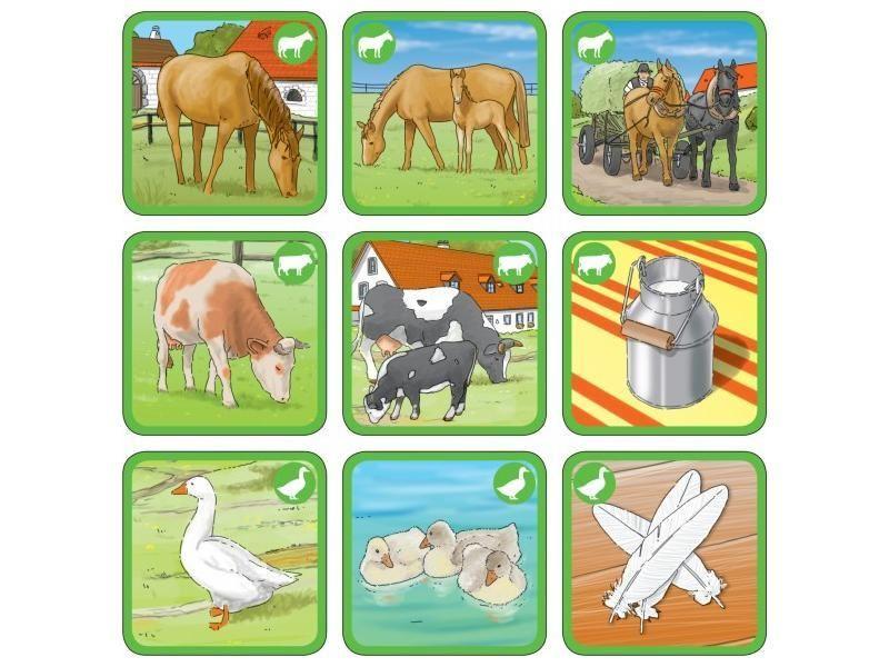 Pexetrio Stromy Hľadat Googlom Mit Bildern Haustiere Tiere Kinder Lernen