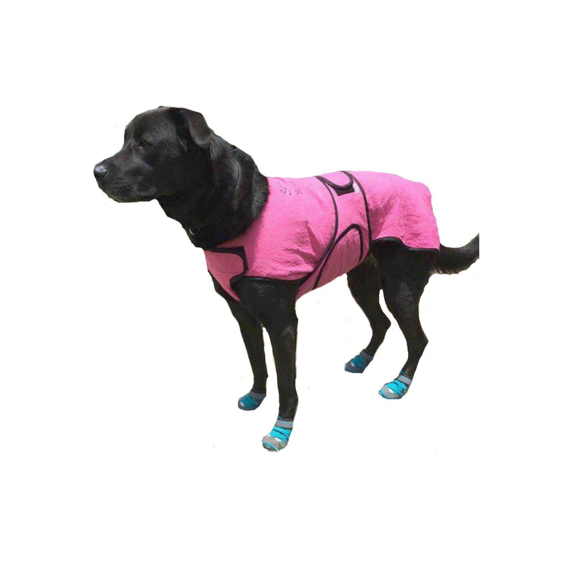 Dog Chiller Plus Cool Coat Custom Dog Cooler Cooling Coats For
