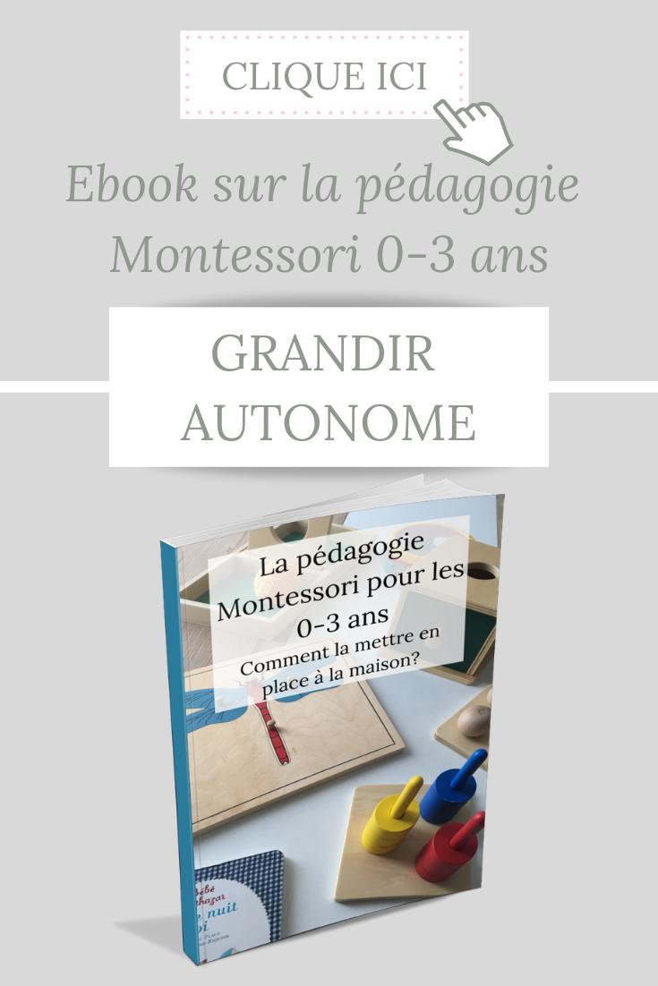 La Pedagogie Montessori Expliquee En 1 Ebook Le Blog