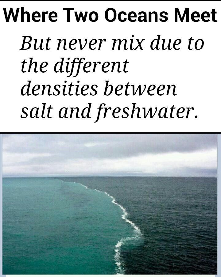 a place where freshwater and saltwater meet is called