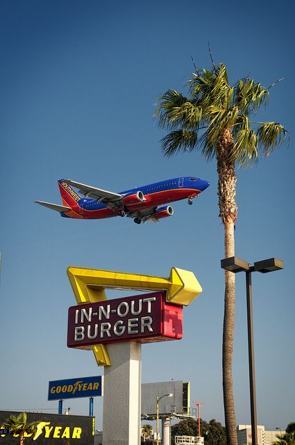 Southwest Air Inandoutburger And A Palm Tree Can T