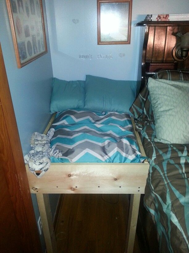 co sleeper dog bed
