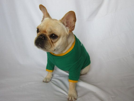 online store 8c3b5 eac3d Baylor University Dog T-shirt on Etsy, $23.00 | All Things ...