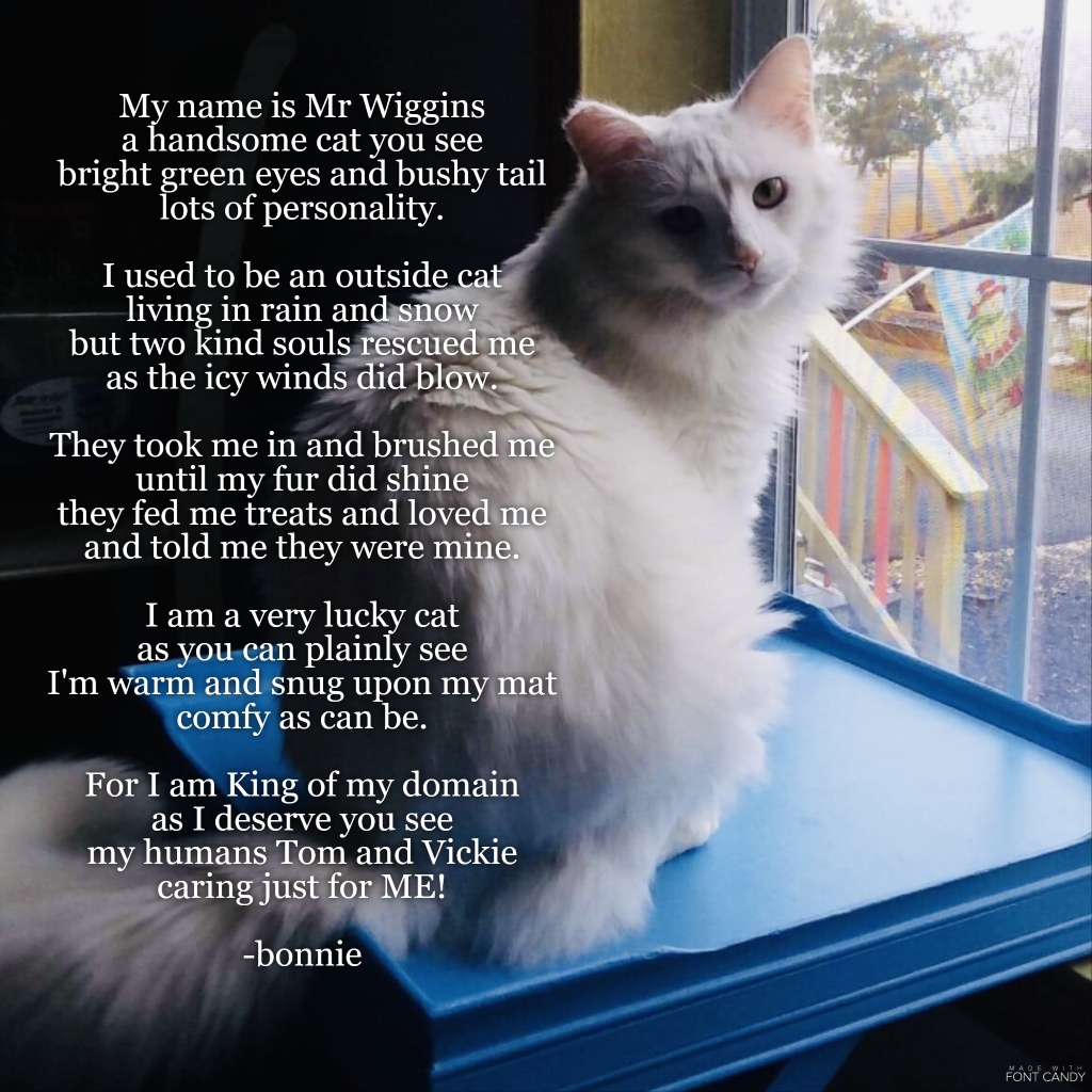 Mr Wiggins Poem With Images Best Friend Poems Seasons Of Life