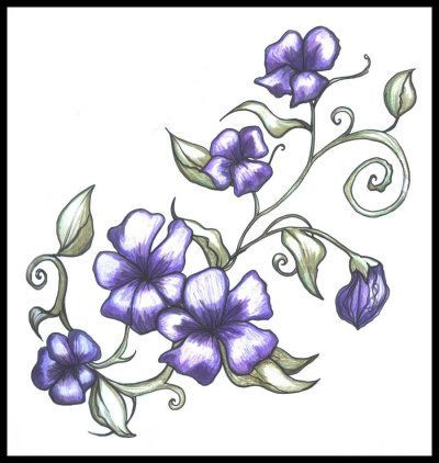 Morning Glory Flower Tattoo September Tattoo Pinterest Flower Tattoo Violet Flower Tattoos Vine Tattoos