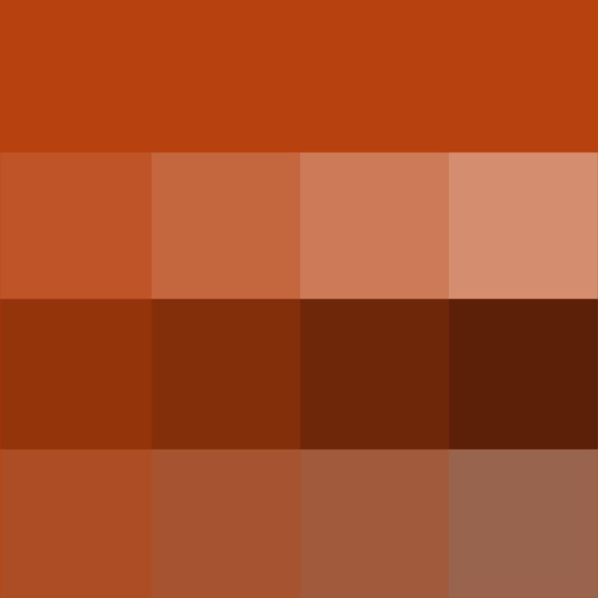 Rust Hue Tints Shades Tones Hue Pure Color With Tints Hue White Shades Hue Black And Tones Hue Rust Color Paint Color Textures Colour Tint