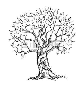 arbres stylises winter tree dans un style stylis e couleurs noir et blanc isol sur fond. Black Bedroom Furniture Sets. Home Design Ideas