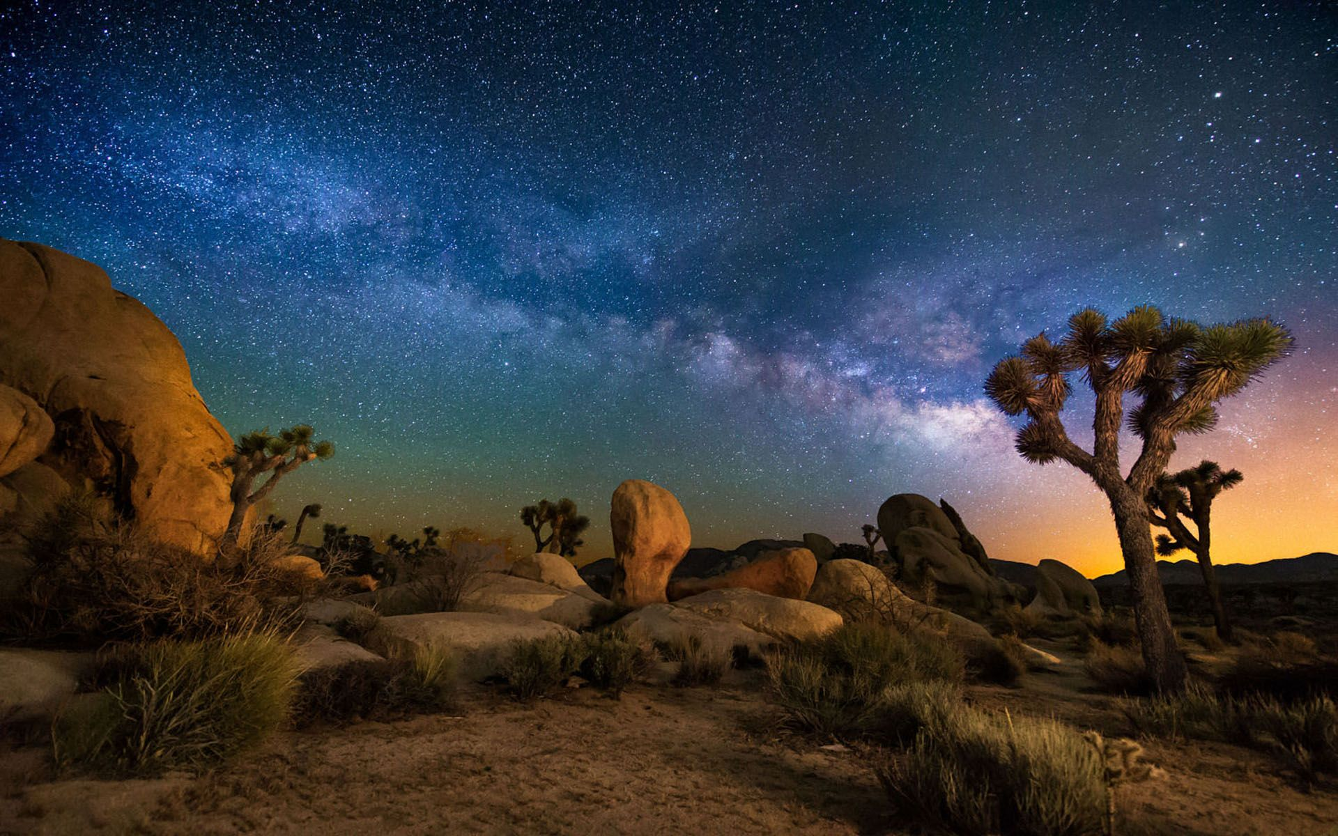 Download Starry Sky Desert Area Night In Joshua Tree