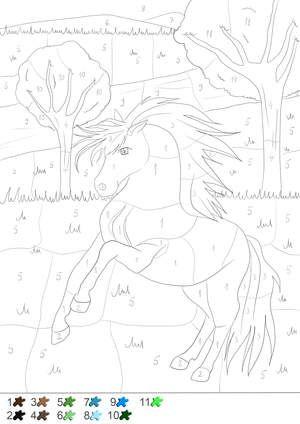 Pferd Malen Nach Zahlen Childrens Coloring Book Malen