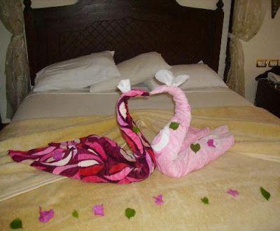 Piegare Gli Asciugamani A Forma Di Animale : Fatti che ci circondano asciugamano sculture di animali