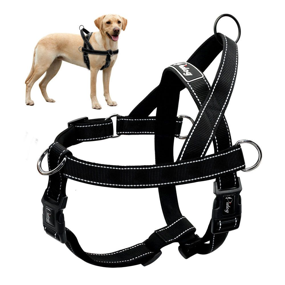 Didog Pet Harnesses Pet Supplies Dog Harness Dog Tags Pet